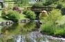 Japanese Garden-Lauriston Castle, Edinburgh