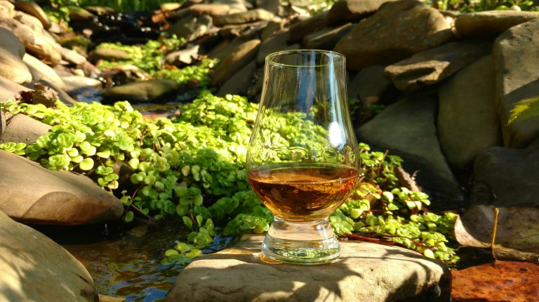 A glass of whisky sitting on a rock next to stonecrop.