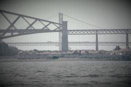 Forth Bridge & Forth Road Bridge
