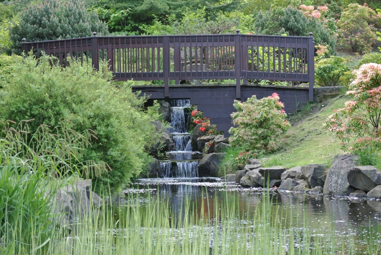 A bridge and waterfall by a pond.