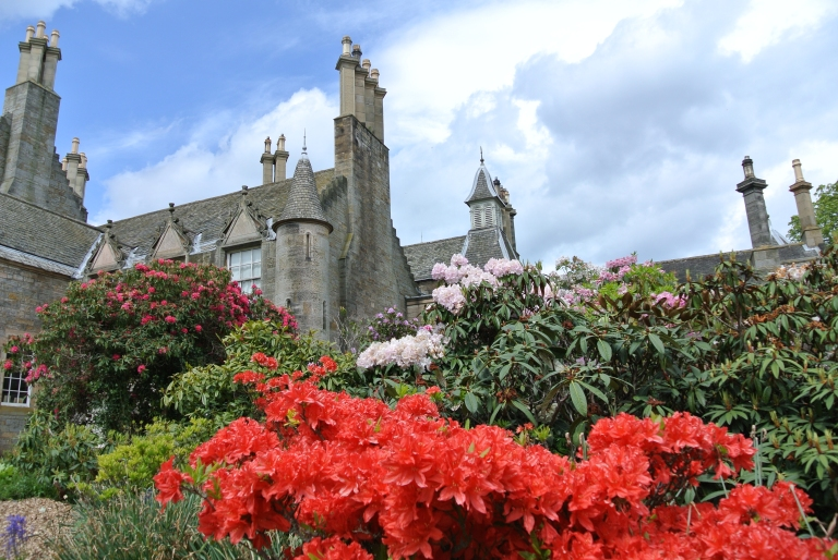 Red and pink flowering shrubs in front of a castle.