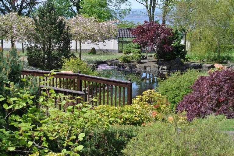 A bridge and a Japanese garden.