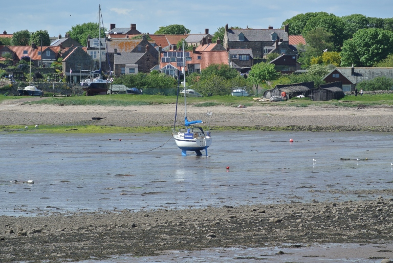 A sailboat docked in low tide.